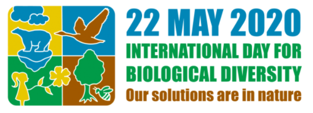 "International Day for Biological Diversity (IDB) - 22 May 2020 entitled: ""Our solutions are in nature"""