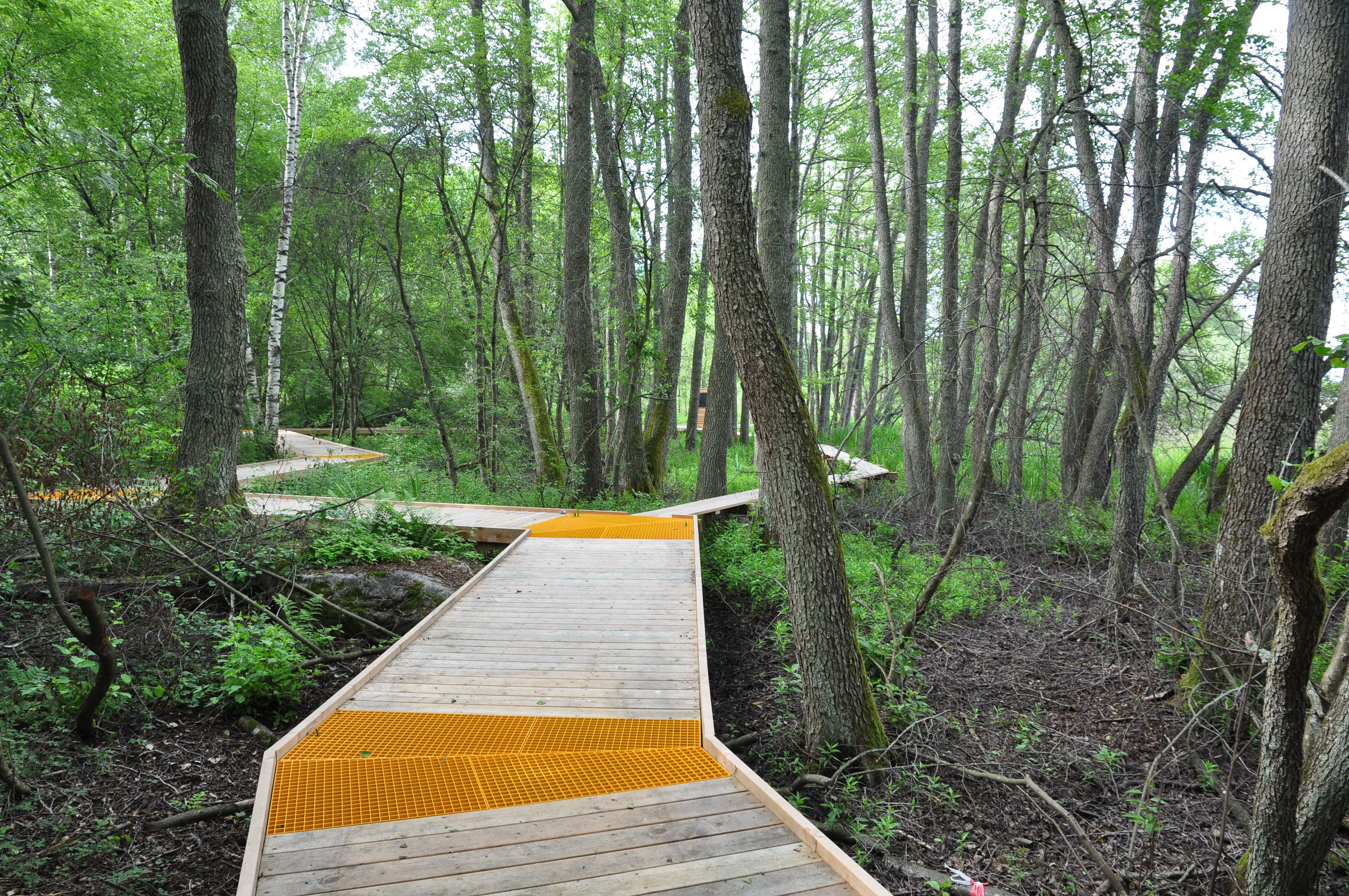 "IFLA Europe Exhibition ""Landscape as a Common Ground"" continues - we  present project from SWEDEN entitled ""The Arninge - Ullna Riparian Forest Park"""