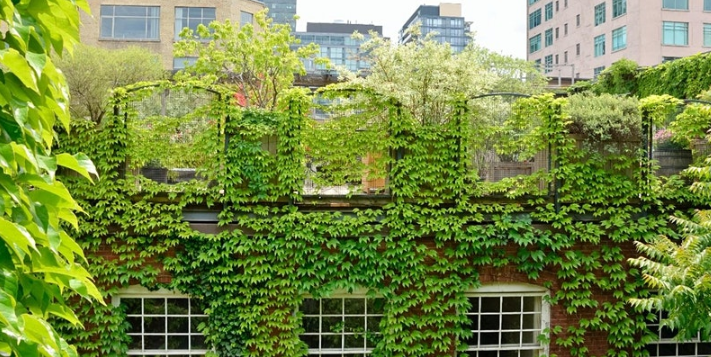 GrowGreen webinar: NBS implementation – Learning from the GrowGreen cities, 26 October 2021