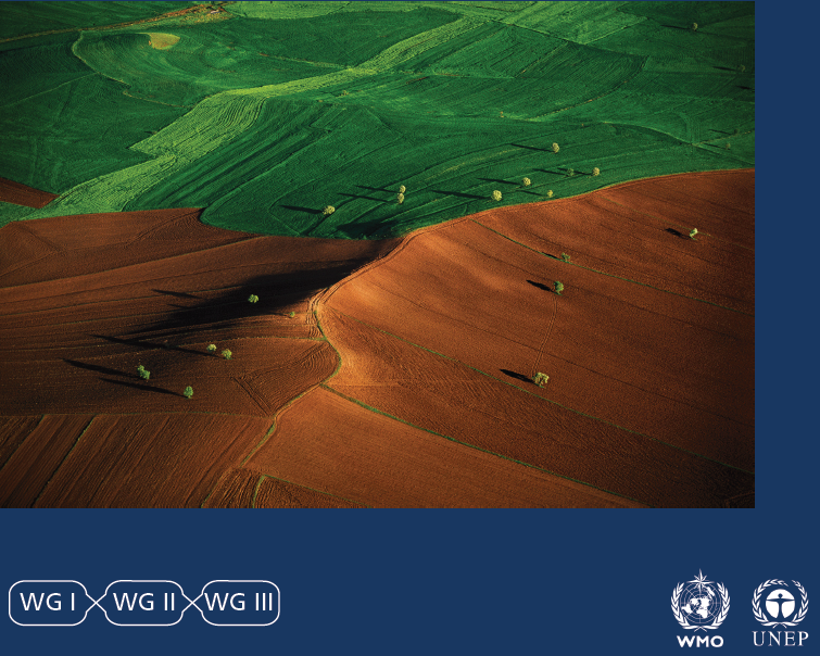 Intergovernmental Panel on Climate Change (IPCC) issues Special Report on Climate Change and Land