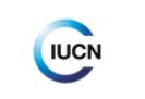 IFLA Europe Award 2020 to IUCN European Regional Office!