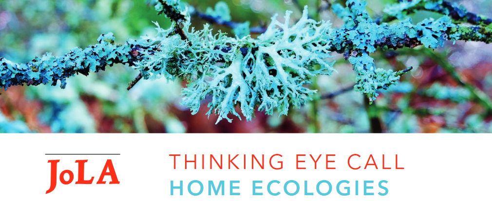 JoLA Thinking Eye Special Call: Home Ecologies - deadline 1 July 2021!