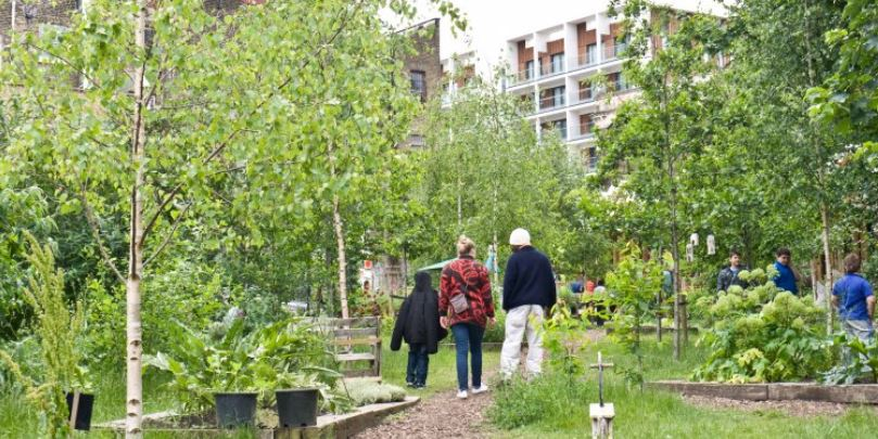 """EC Report """"Nature-based solutions towards sustainable communities"""""""
