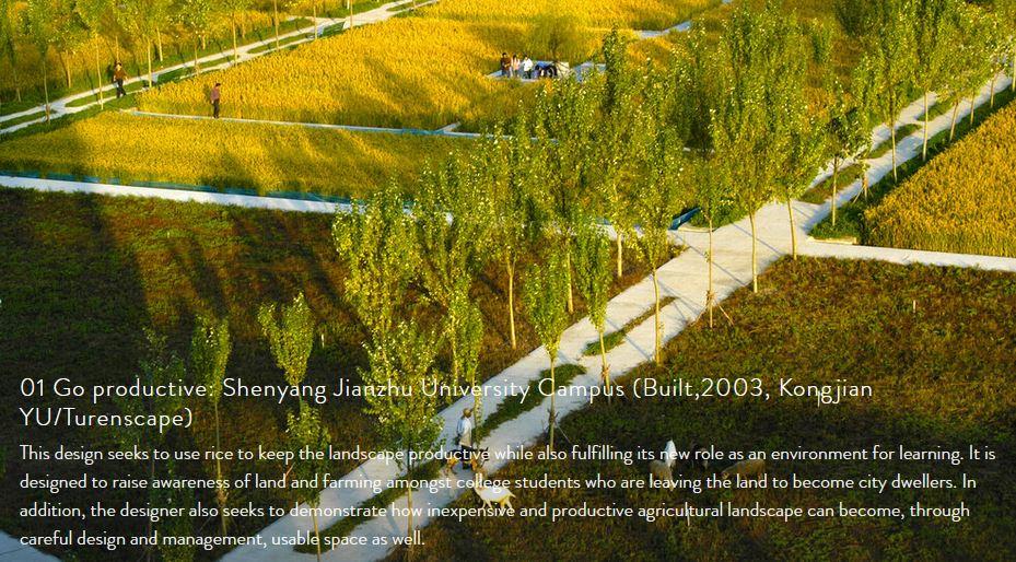 01 Go productive: Shenyang Jianzhu University Campus (Built,2003, Kongjian YU/Turenscape)