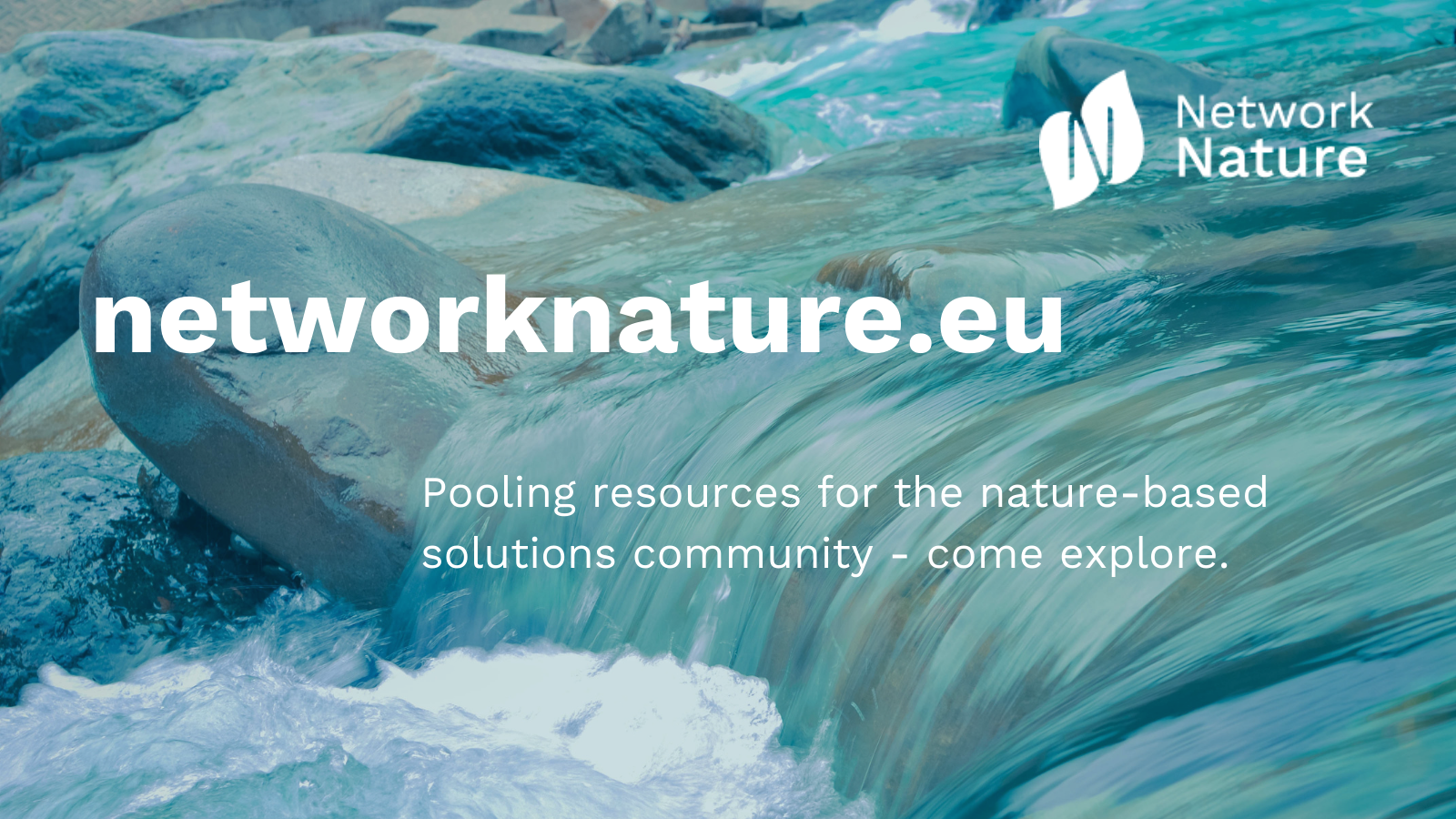 IFLA Europe joins NetworkNature's Stakeholder Advisory Board!
