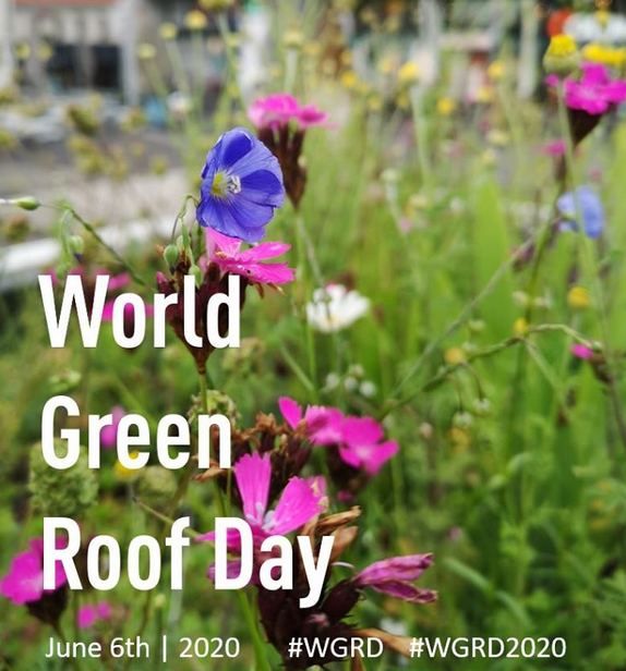 World Green Roof Day - 6 June 2020