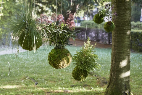2018 / Hanging Garden / B- Realized projects